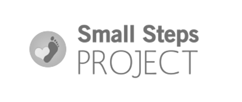 Small Step Project